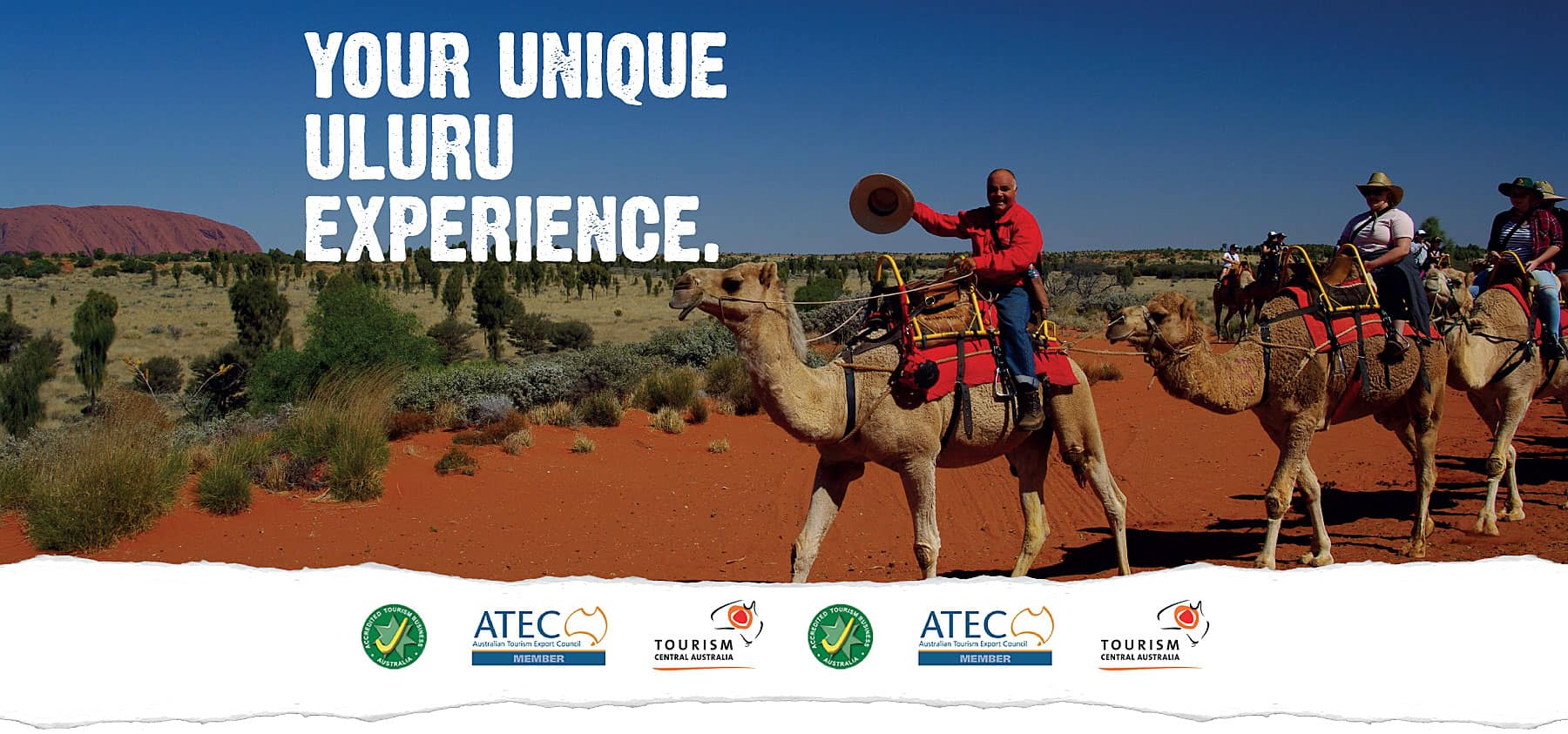 Uluru Camel Tours Your Unique Uluru Experience